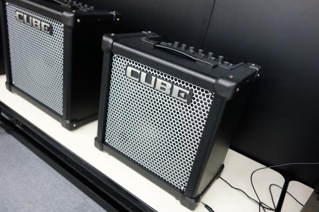DSC01299-s