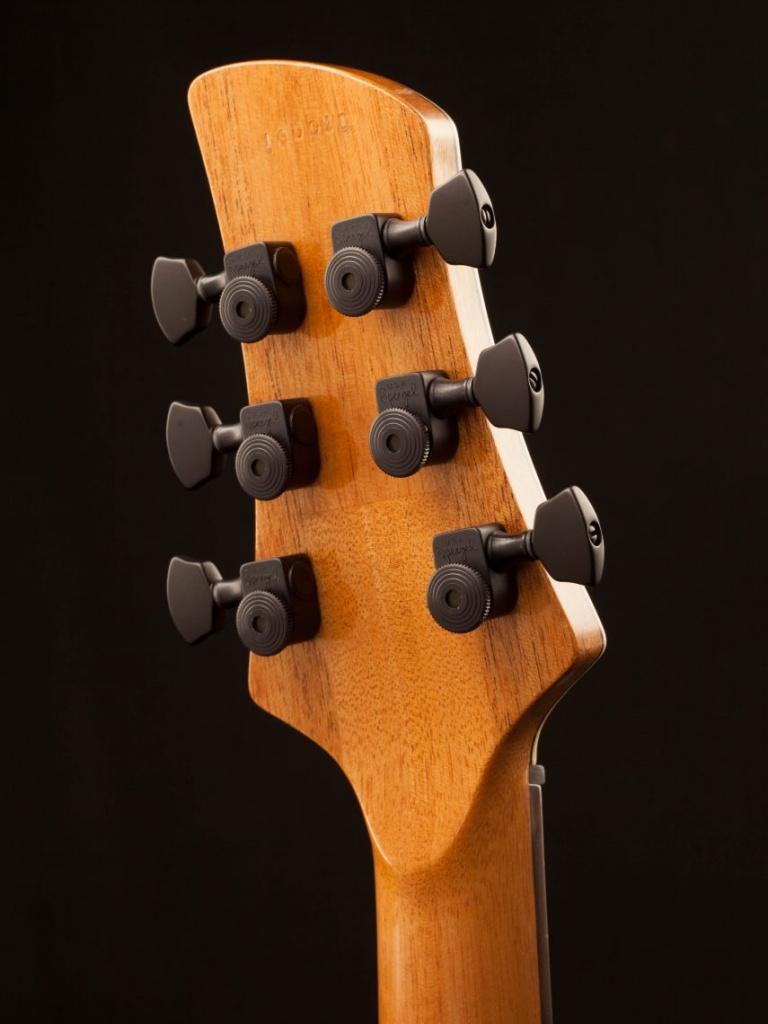 Guitar_Headstock_Back-161220-585997868399e-855x1140
