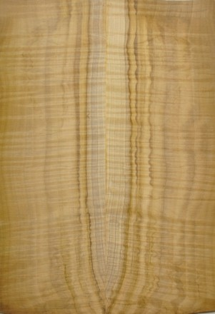 s-magnolia1
