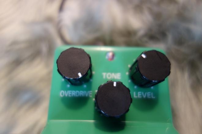 DSC02081-s