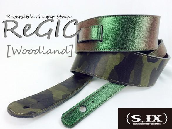 s-ReGIC_woodland