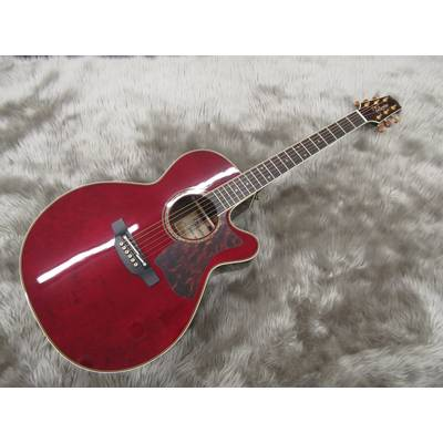 Takamine DMP50S WR:Wine Red