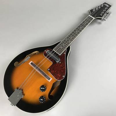 ARIA AM-20E Mandolin