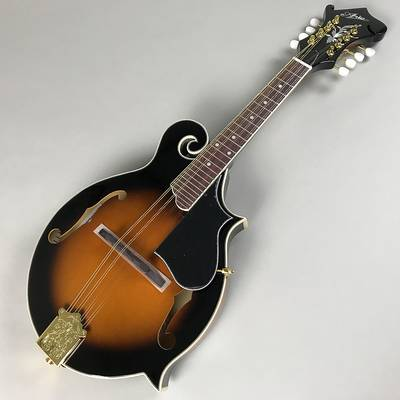 ARIA AM-40 Mandolin