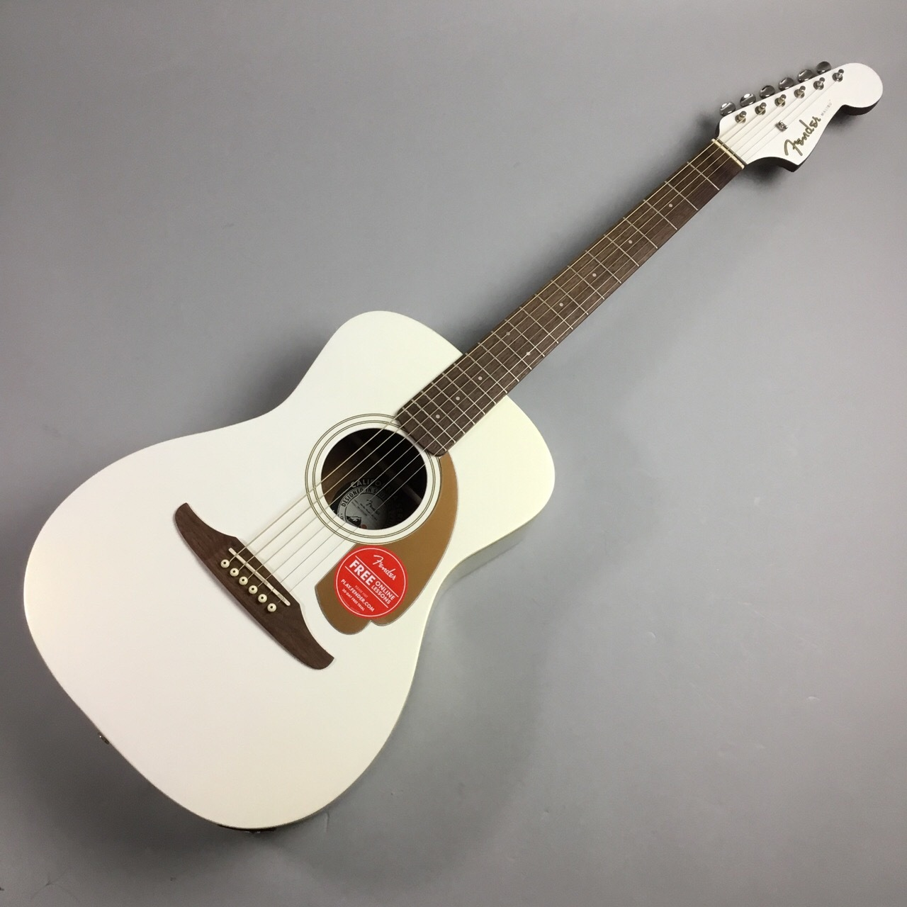 Fender Malibu Player ARG