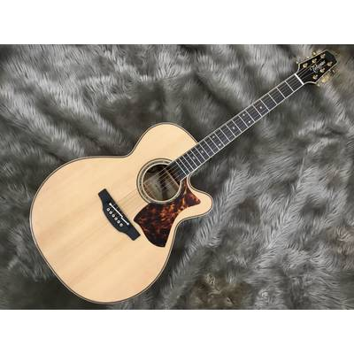 Takamine ?MP500KC-DC NT