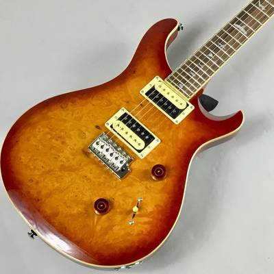 PRS SE CUSTOM 24 LAUREL BURL 【限定モデル】 VS