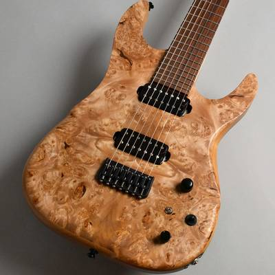 dragonfly SOTTILE Custom 7st 666 Burl Maple Top