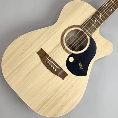 Maton PERFORMER NAT